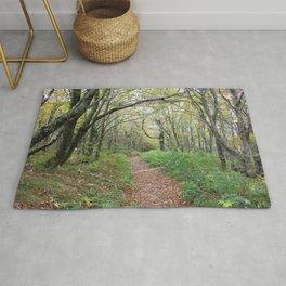 Enchanted Path Rug