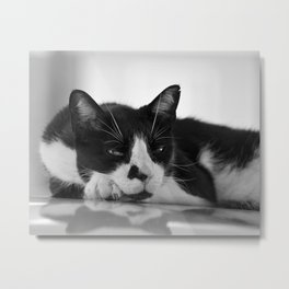 Cat's Look Metal Print