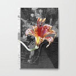 Flora Endemica #009 Metal Print