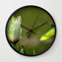 Tulip buds Wall Clock