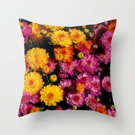 sunburst - 1 Throw Pillow