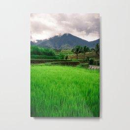 Rice Terrace and Mountains Bali Metal Print