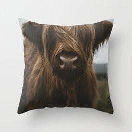 Scottish Highland Cattle Throw Pillow
