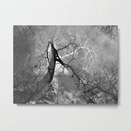 364 | austin Metal Print
