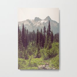 Faraway - Wilderness Nature Photography Metal Print