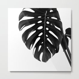 Monstera Delight #2 #tropical #decor #art #society6 Metal Print