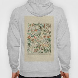 Flower Diagram // Fleurs V by Adolphe Millot 19th Century French Science Textbook Artwork Hoody