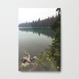 annette lake Metal Print