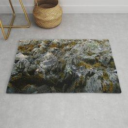 Coastal Rock Microcosms Rug