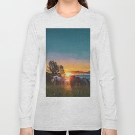 Horse Sunrise (Color) Long Sleeve T-shirt