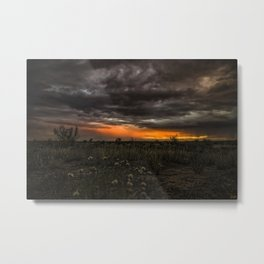 Such A Sight.... Metal Print