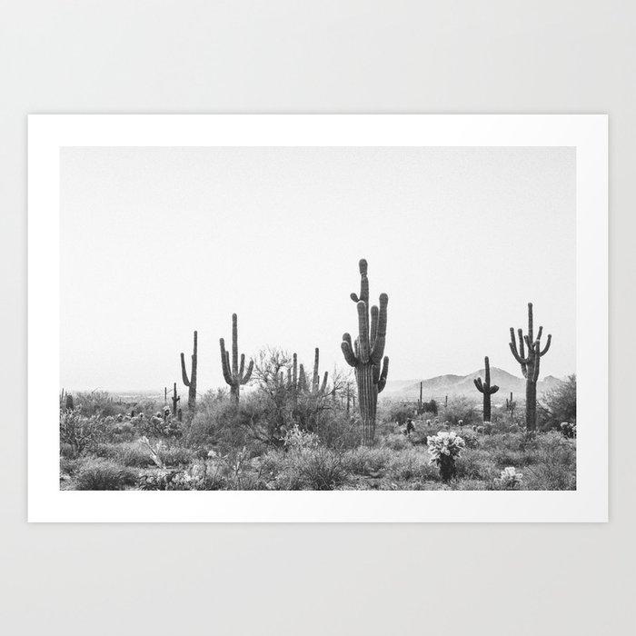 DESERT / Scottsdale, Arizona Kunstdrucke