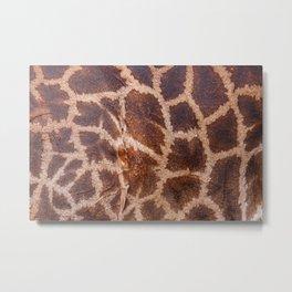 Giraffe Fur Metal Print