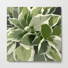 Hostas, altered reality graphic design, shades of green Metal Print