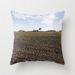 Corn Field 5 Throw Pillow