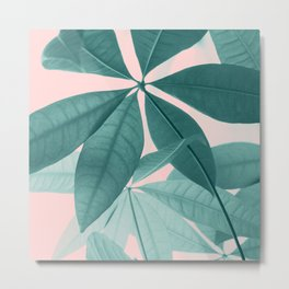 Pachira Aquatica #5 #foliage #decor #art #society6 Metal Print