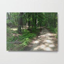 Path to the Sylvan Village Metal Print
