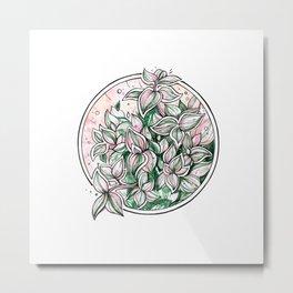 Tradescantia ~ watercolor illustration Metal Print