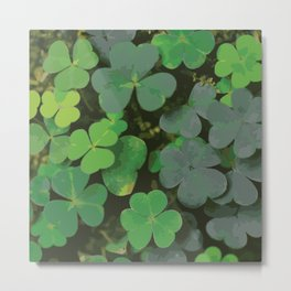 Bed of Clovers Metal Print