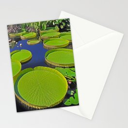 Water Platters Stationery Cards