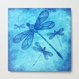 Beautiful dragonflies in blue Metal Print