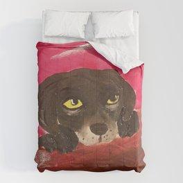 Jake, the Baby Labrador Comforters