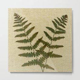 Ferns 2 by Kathy Morton Stanion Metal Print