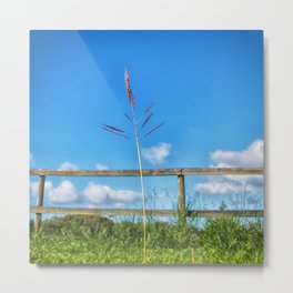 Grass in the country Metal Print