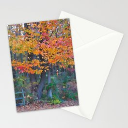 Autumn Trail at Lums Stationery Cards