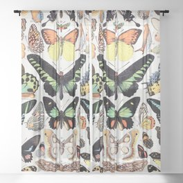 Adolphe Millot - Papillons B - French vintage poster Sheer Curtain