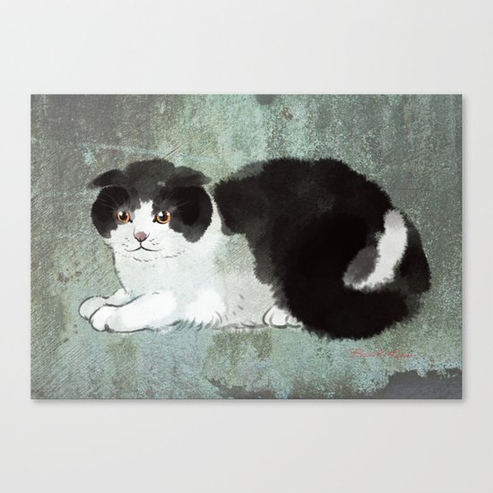 Scottish Fold Cat by bignosework
