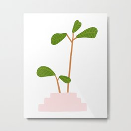 Fiddle Leaf Fig Tree Plant Metal Print