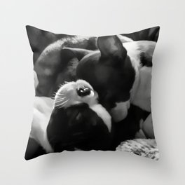 Sleeping Beauties - Boston Terrier Throw Pillow