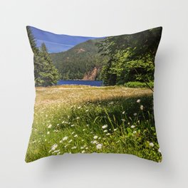 Field of Daisies and Lake Crescent Throw Pillow