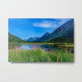 God's_Country 4129 - Alaska Metal Print