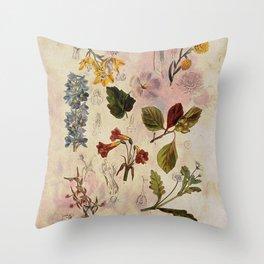 Botanical Study #1, Vintage Botanical Illustration Collage Throw Pillow