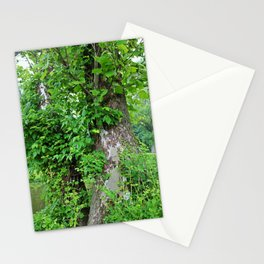 Quietly Quirky Stationery Cards