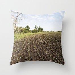 Corn Field 4 Throw Pillow