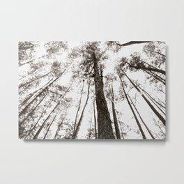 Fading Metal Print