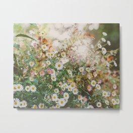 Meadow Wild Flowers Metal Print