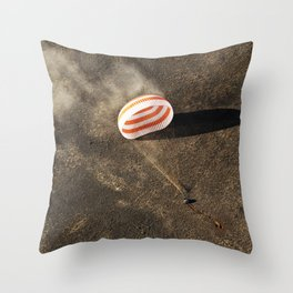 The Soyuz MS-02 spacecraft is seen as it lands with Expedition 50 near the town of Zhezkazgan Kazakh Throw Pillow