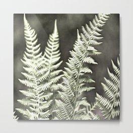 Fantasy Feather Like Fern Metal Print