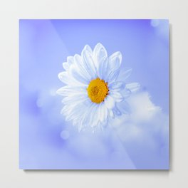 Daisy in the sky Metal Print
