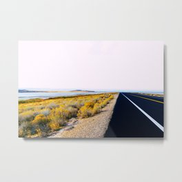 Along the Salt Flats Metal Print