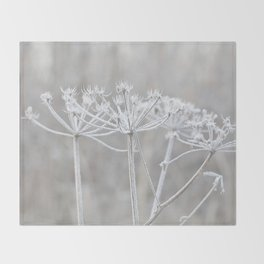 cow parsley plant  with hoarfrost in winter Throw Blanket