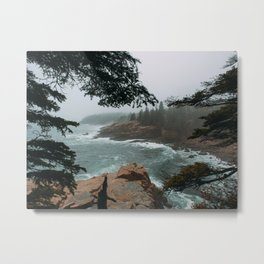 Foggy Morning in Acadia National Park Metal Print