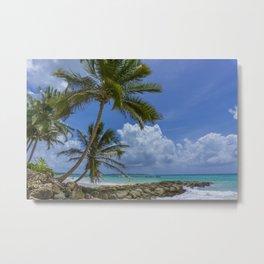 Palms on Barbados Metal Print