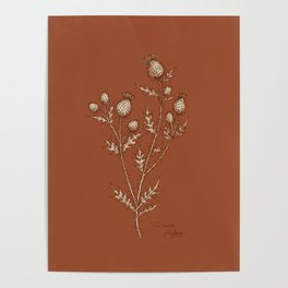 Thistle in Autumn Poster