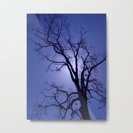 Blue Berry Sky Metal Print