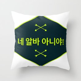 None of Your Business (네 알바 아니야) Throw Pillow
